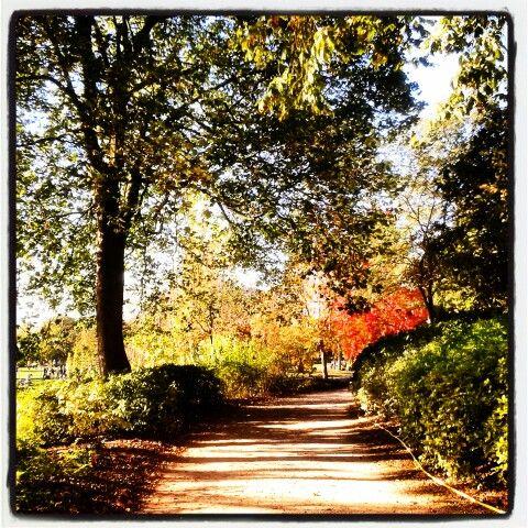 Woods of Vincennes / Bois de Vincennes #BoisDeVincennes #Fall #Autumn #Automne #FallLandscape