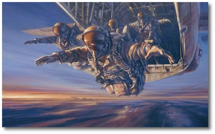 Special Forces HALO by Stuart Brown