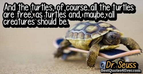 And the turtles, of course...all the turtles are free, as turtles and, maybe, all creatures should be.