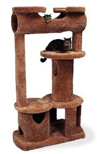 The best cat furniture I've ever seen.
