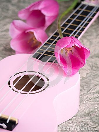 A romantic still life of pink tulips and a pink ukulele musical instrument.