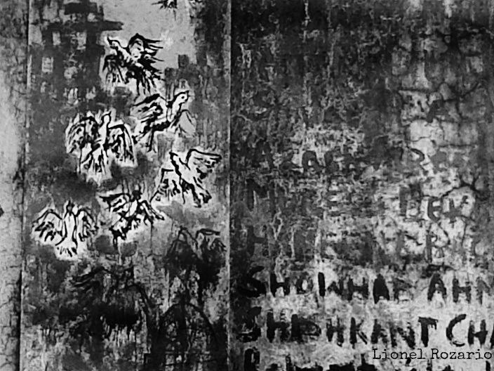 Scatterd Doves. #Graffiti