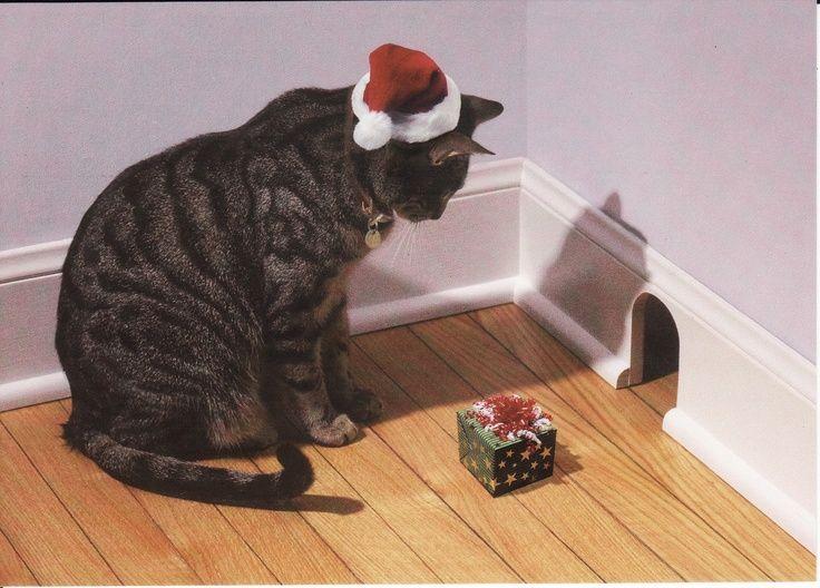 chat guirlande de noel   Petite souris ! Le Père Noël est passé... Et moi, j'attends MON ...