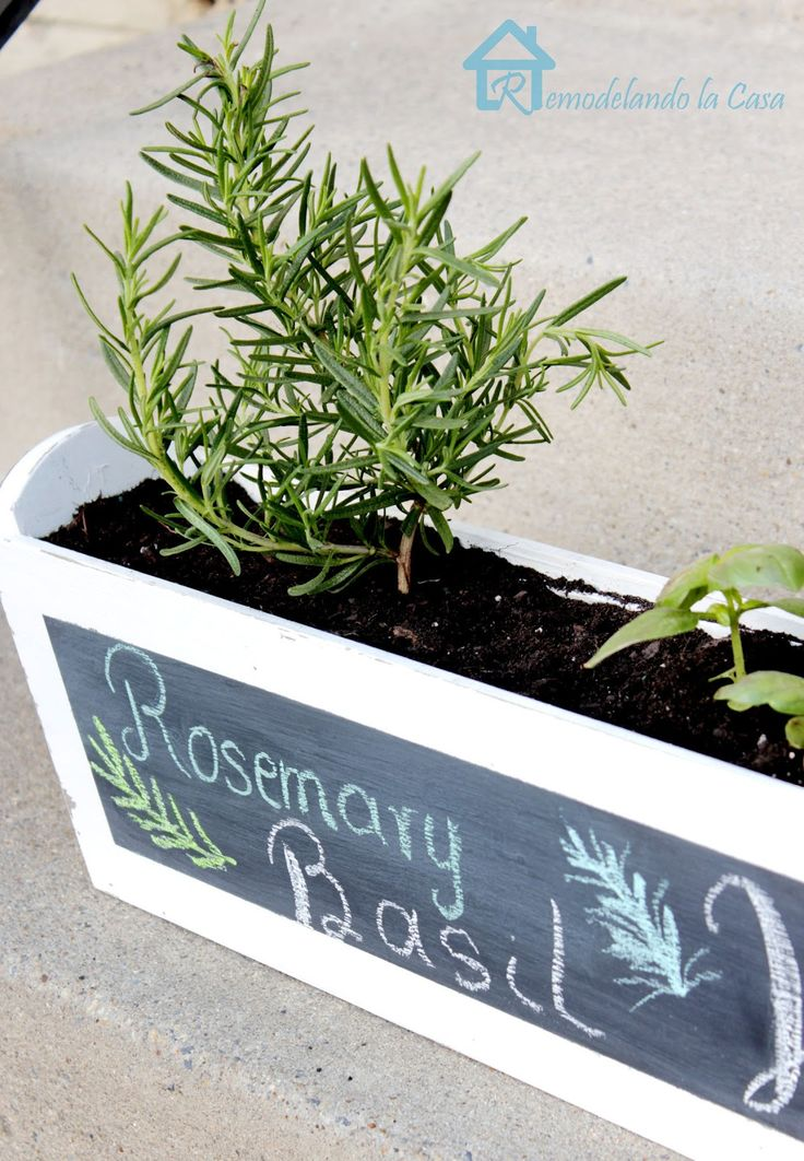 Diy Kitchen Herb Planter Gardens Planters And Herbs