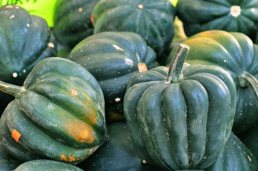 Acorn Squash Nutrition Information   LIVESTRONG.COM