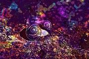 "New artwork for sale! - "" Snails Housing Molluscs Shell  by PixBreak Art "" - http://ift.tt/2w8wPPX"
