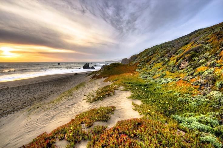 Sunset near Bodega Bay, CA: Glorious Natural, Awesome, Bodega Bays, Wonder Pics, Sunrise Sunsets, Case, Sunri Sunsets, Gorgeous Pics, Sunrises Sunsets