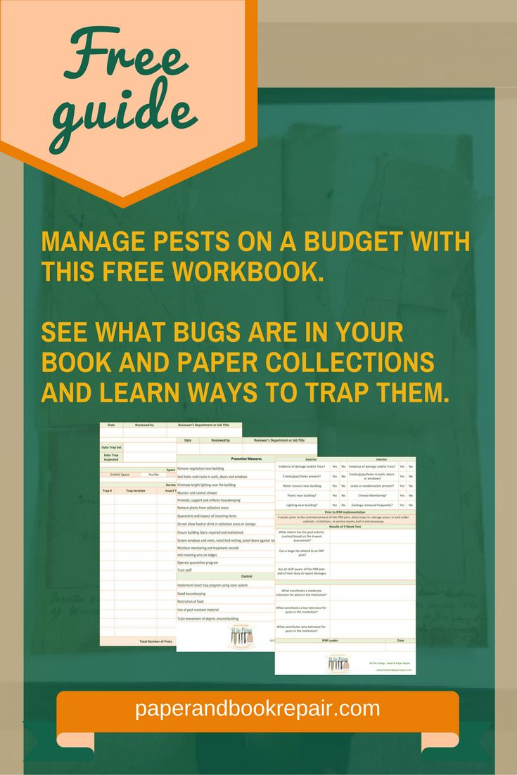 The Integrated Pest Management approach consists in non-toxic methods for pest elimination. Learn how to get rid of insects (paper bugs).