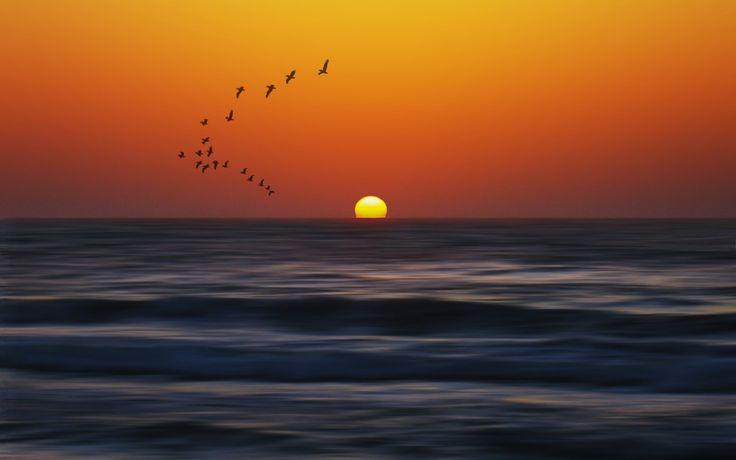 Gün batımı ve deniz manzarası