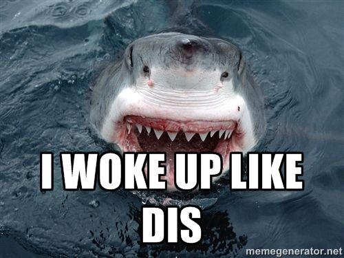 I woke up like dis - Insanity Shark | Meme Generator