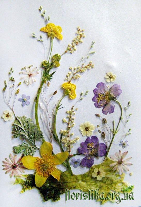 Открытка плоскостная флористическая