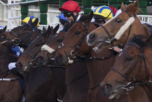 Bets Of The Day: Qurbaan to make it a good Friday at Lingfield  https://www.racingvalue.com/bets-of-the-day-qurbaan-to-make-it-a-good-friday-at-lingfield/