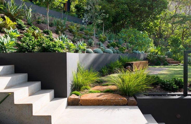Wategos Byron Bay Landscape Design | Secret Gardens