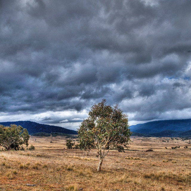 Rare rain outside Canberra