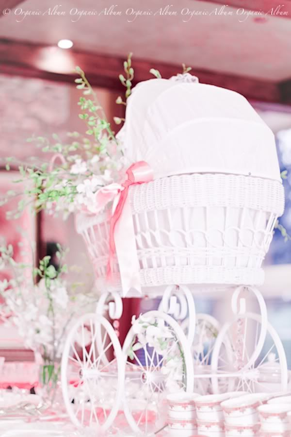 girl baby shower wish i could find one of these doll prams in