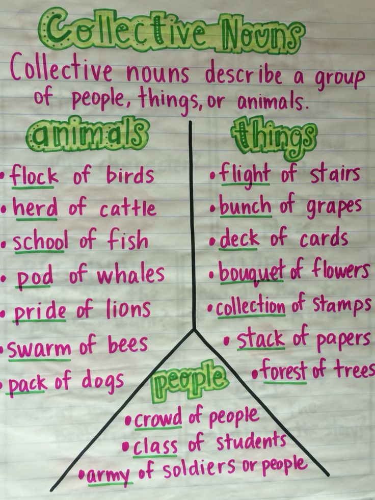 L.2.1 collective nouns