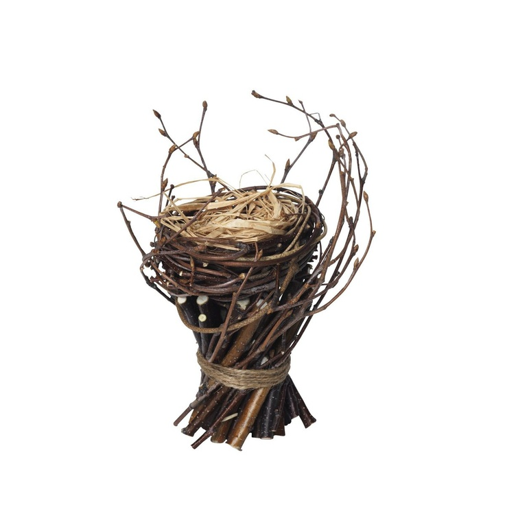 Fågelbo på kvistar