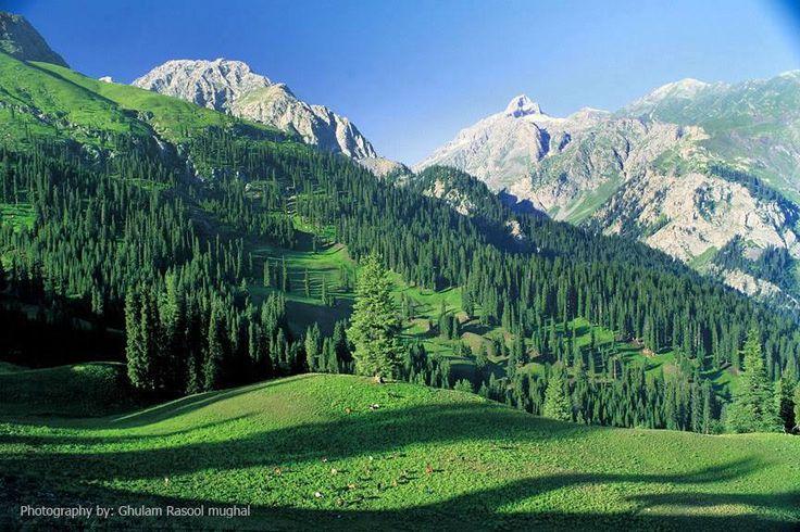 Dessan Valley In Swat Beauty Of Pakistan Pinterest Swat