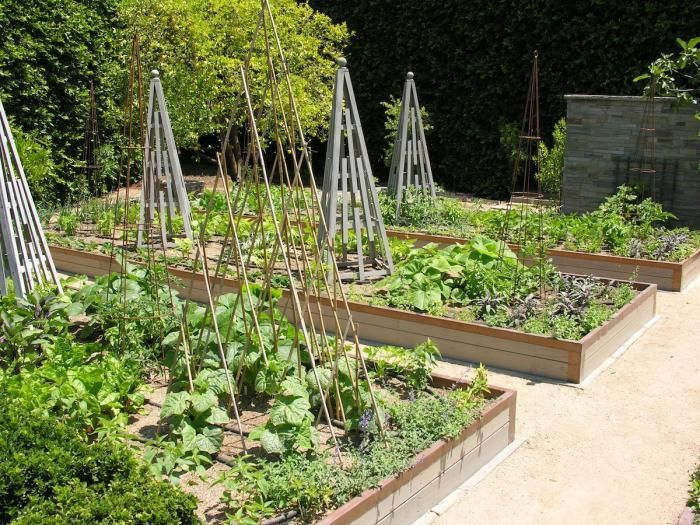 Copper Tape From Gardener 39 S Supply Co Or Lines The Top Of These Raised Beds To