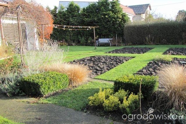 Pokażę nasz ogród - strona 309 - Forum ogrodnicze - Ogrodowisko