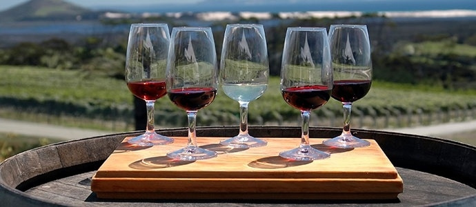 Wine Tour in Niagara: Discover the tasty wines the Niagara region has to offer before the winter snow covers the vineyards. For more information on wineries visit, http://wineriesofniagaraonthelake.com/