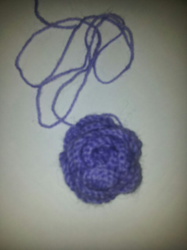 rosellina di lana