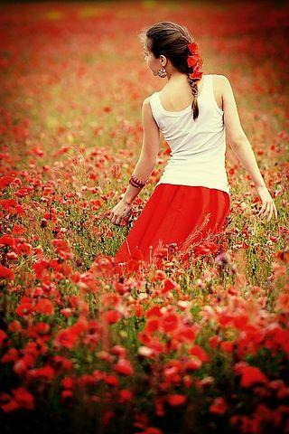Мечтаю попасть на маковое поле, маковое поле как попасть - на бэби.ру