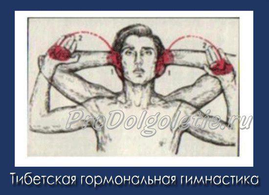 Тибетская гормональная гимнастика. Прокачиваем уши