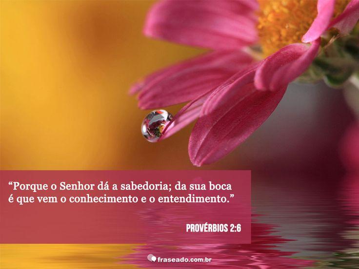 Porque o Senhor dá a sabedoria; da sua boca é que vem o conhecimento e o entedimento. Provérbios 2:6
