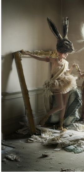 tim walker version of a rabbit < alice in wonderland, mirrors and derelict