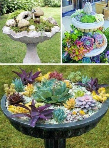 Veche fantana decorativa transformata in ghiveci pentru niste flori de piatra