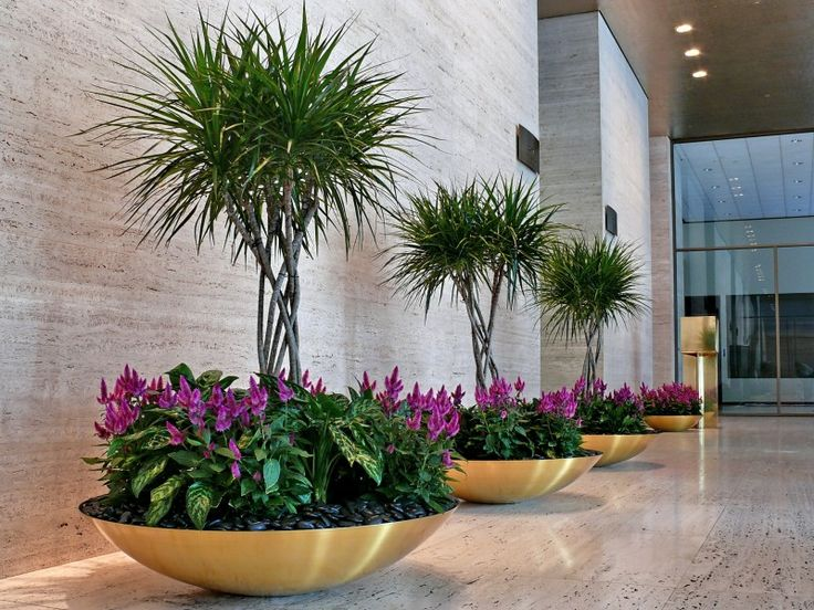 commercial plant interior design - Google Search