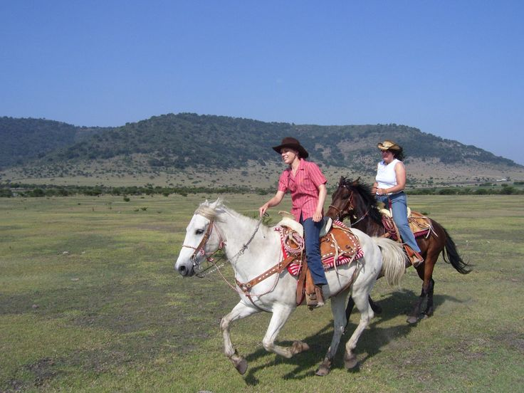Live the greatest experience of riding a horse in the heart of Mexico.  Visit us! http://rancholascascadas.com/ride/