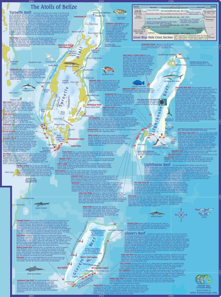 10 best maps of belize images on pinterest belize belize vacations and central america - Best dive trips ...