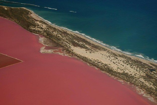Admire the Hutt Lagoon in Kalbarri. | 22 Incredible Things You Never Knew You Could Do In Western Australia | Pink Lake