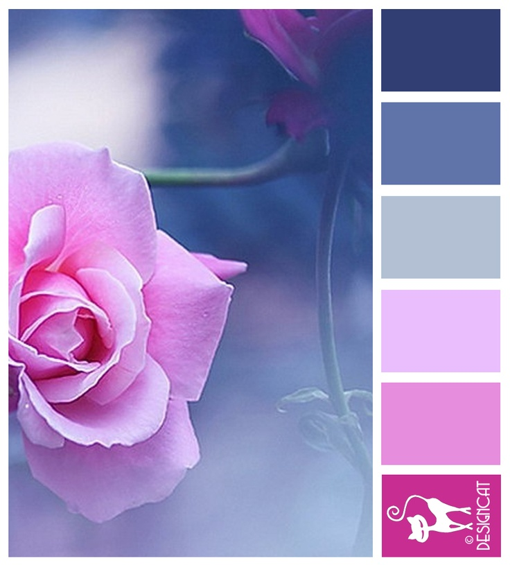 Rose Mist - Blue, Hot Pink, pastel - Designcat Colour Inspiration Board- bedroom feng shui colors