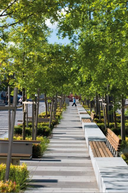 Lonsdale Street, Dandenong, has been transformed from a busy urban thoroughfare to a pedestrian boulevard by Taylor Cullity Lethlean.