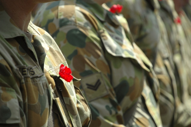 The Red Poppy has special significance for Australians and is worn on Remembrance Day each year.