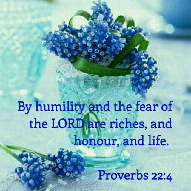 "on properly placed fear: ""The result of humility and the fear of Yahweh is wealth, honor, and life."" --  Proverbs 22:4"