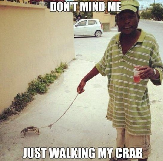 Crab Meme #Mind, #Walk