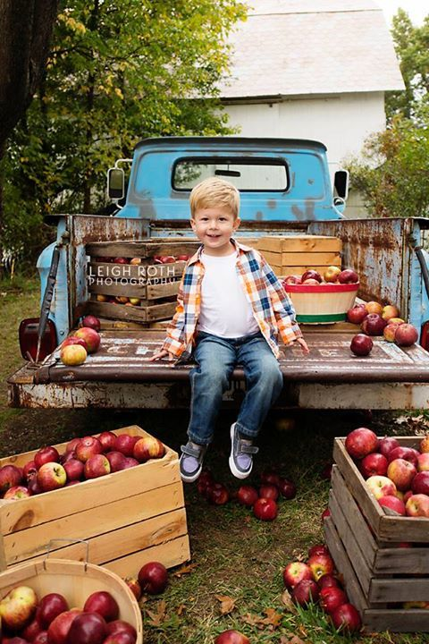 Apple Harvest time at the Southern Comfort  farm. Kid's on the farm love this time of year.