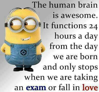 Boy isn't that the truth! I couldn't think to work today.