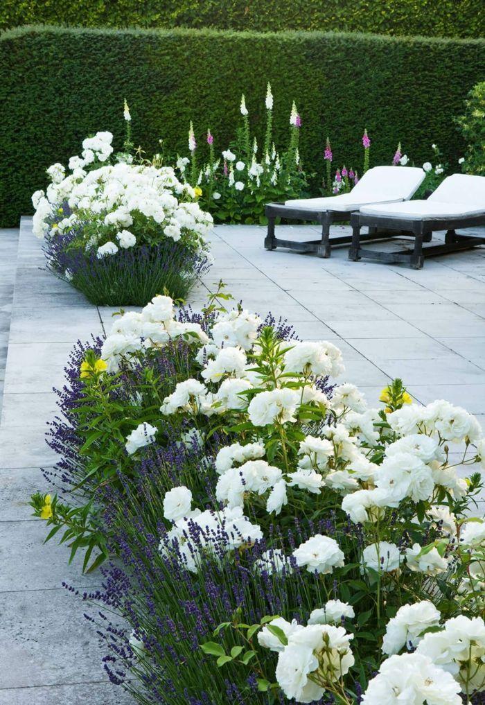 1001 Idees Pour Un Joli Parterre De Fleurs Durable Fleurs En 2020 Massif Fleurs Jardin Paysager Jardin Massif