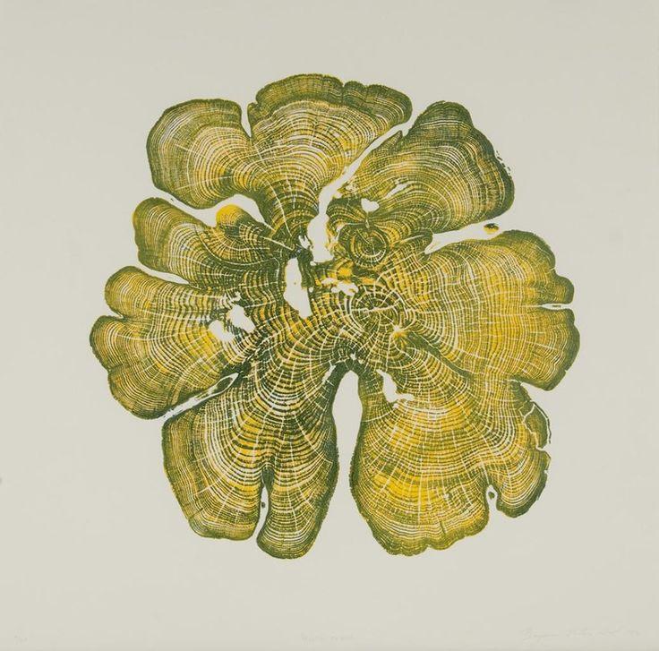 Yellow Cedar