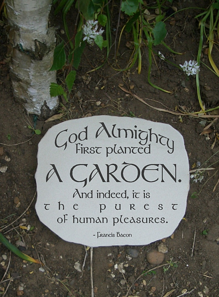 Garden sandstone stepping stone with cool gardening quote. For the gardener who needs inspiring. Namely me.