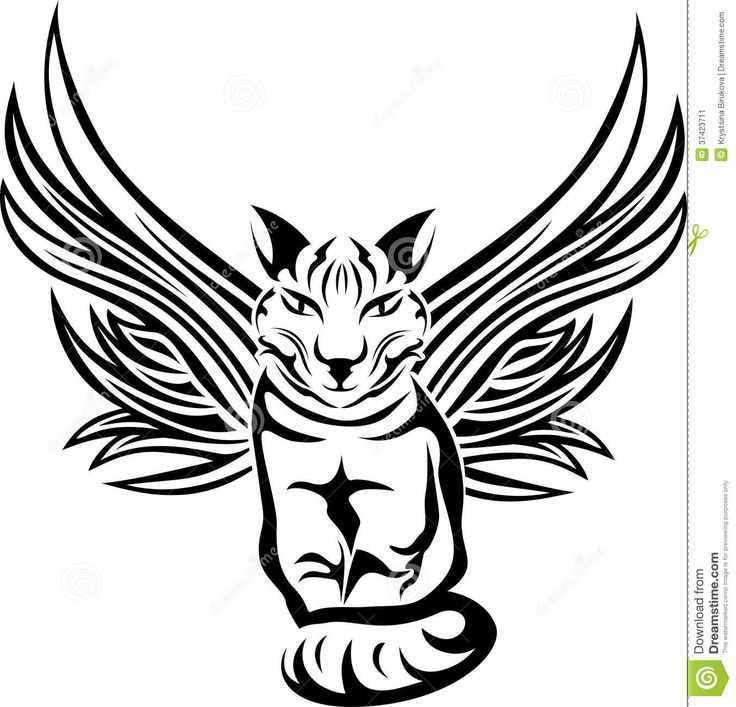 cat with angel wings Quotes
