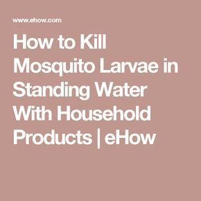 How to Kill Mosquito Larvae in Standing Water With Household Products | eHow