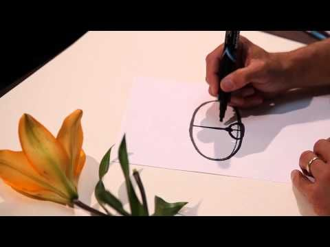 This series of botanical illustration videos will teach you some basic techniques to help you quickly and accurately draw plants, either for field sketching ...