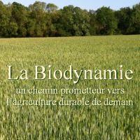 http://www.permatheque.fr/2015/04/04/la-biodynamie-livre-en-pdf/