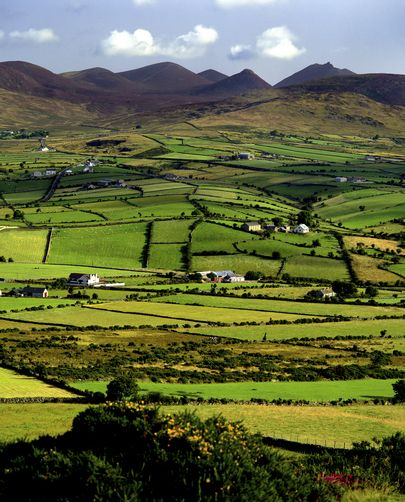 57 Best County Down Images On Pinterest: Best 25+ Northern Ireland County Ideas On Pinterest